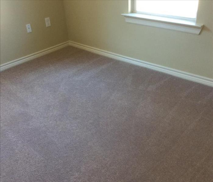 Carpet Cleaning at a Residential House After