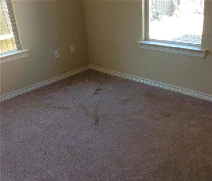Carpet Cleaning at a Residential House Before