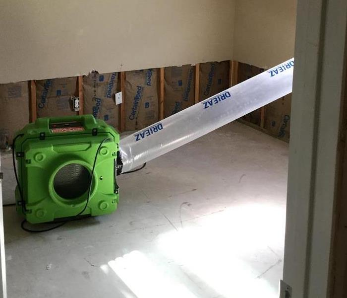 Mold Remediation in Port Arthur, TX