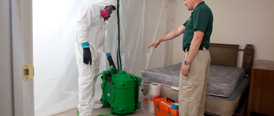 Beaumont, TX mold removal process